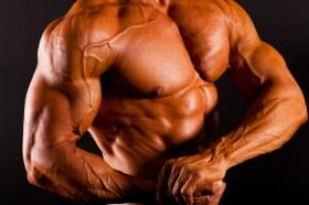 Increase testosterone levels with Forskolin and get more muscle