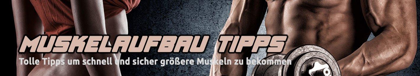 Muskelaufbau Tipps und Produkte